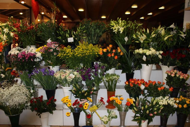 Fleurs coup es isabelle fleurs for Achat fleurs et plantes en ligne